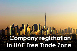 Company registration in Free Trade Zone, UAE. The advantages of an onshore company in FTZ UAE.